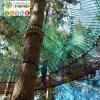 La selva laventura_Bosc elastic_4