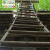 La selva laventura_circuit acrobatic_1