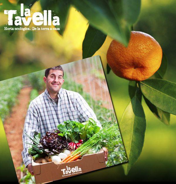 La Tavella - U-Vals UVic