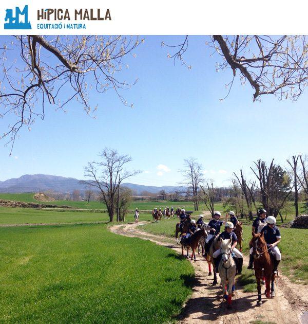 Hipica Malla - U-Vals UVic