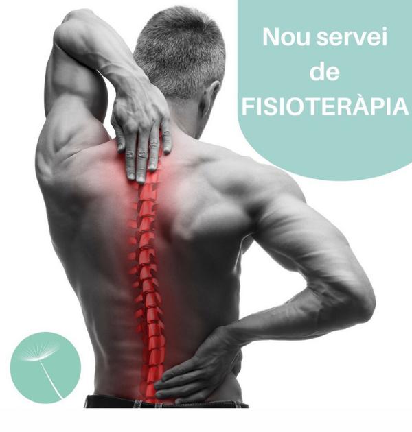 montsestetic_servei fisioterapia_canva 600x630